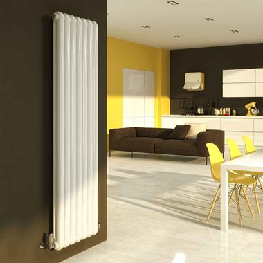 DQ Heating Cassius Column Style Mild Steel Vertical Designer Radiator